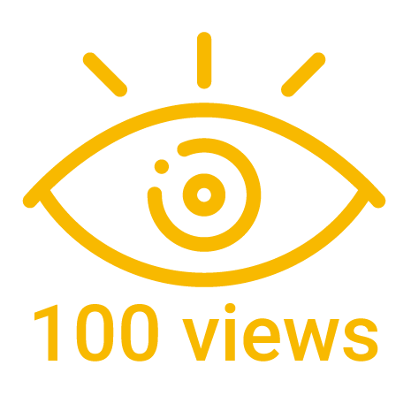 100 instagram views