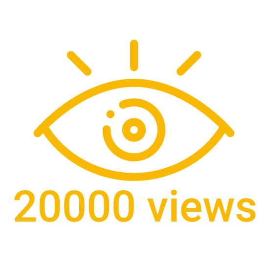 20000 instagram views